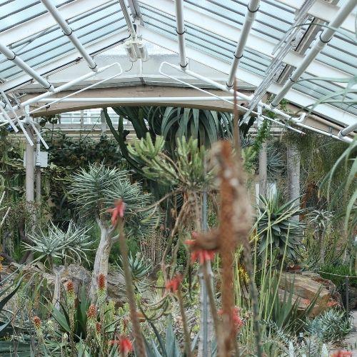 discover-zurich-botanic-garden