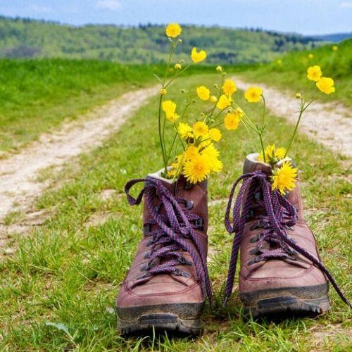 discover-zurich-hiking